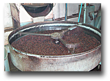 Roasting-coffee