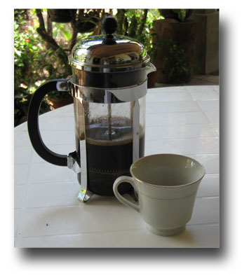 First-cup