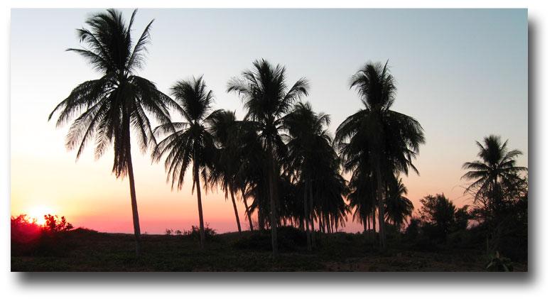 Coral-de-mulas-sunset