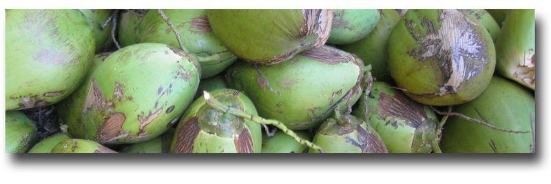 Coconut-bar