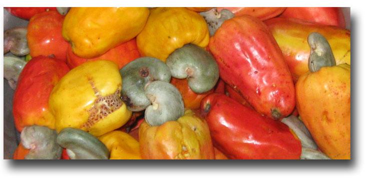 Market-Cashews