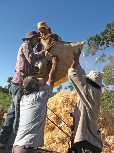 Corn-threshing